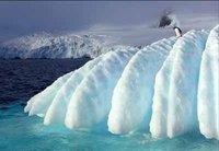 Exposición de fotos de la Antártida