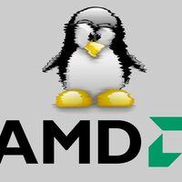 Los drivers gráficos de AMD Radeon ya representan más del 10% de todo el kernel de Linux