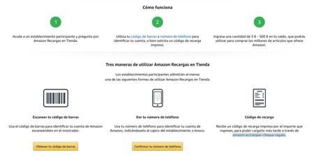 Amazon Cheque