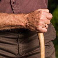 La reforma de las pensiones va por mal camino: pan para hoy y hambre para mañana