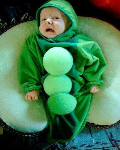 bebé guisante