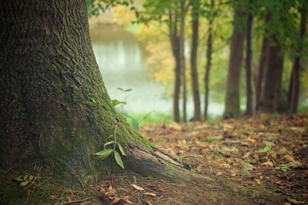 Un fin de año cargado de incertidumbre; así se presenta el otoño para los autónomos