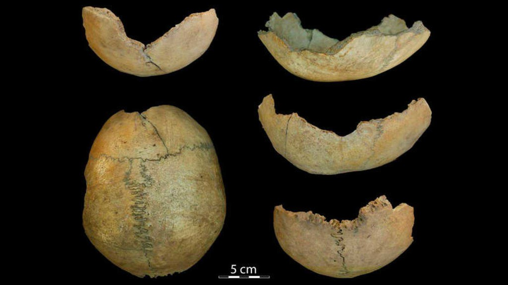 Cráneos tallados con forma de copa, prácticas caníbales y otras cosas que se hacían en Málaga hace 7.000 años