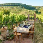 Nosotros queremos disfrutar del mejor picnic y Staub tiene las piezas perfectas para organizarlo