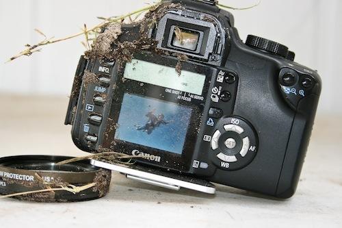 Foto de Una Canon EOS 350D que sobrevive a una caída de 900 metros (5/5)
