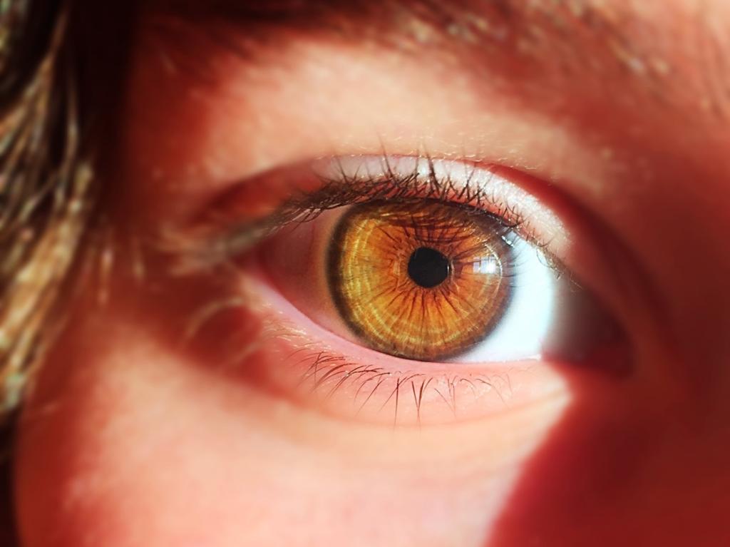 Han creado un ojo artificial que tiene la misma estructura que uno biológico y que ha podido