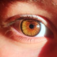 """Han creado un ojo artificial que tiene la misma estructura que uno biológico y que ha podido """"ver"""""""