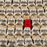 Plan de iguadad en la pyme, para qué empresas es obligatorio y cuándo entra en vigor