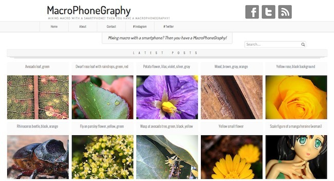 MacroPhoneGraphy web