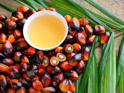 Aceite de palma: así se ha convertido en el nuevo supervillano de la alimentación