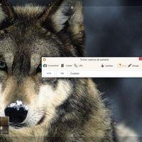 Este programa te permite hacer capturas de pantalla, grabar tu escritorio y subir tus vídeos a YouTube