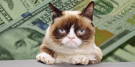 Tardar Sauce Aka Grumpy Cat With Money