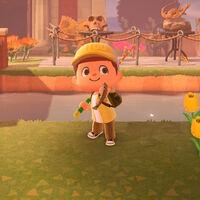 Animal Crossing: New Horizons: lista con todos los peces de marzo