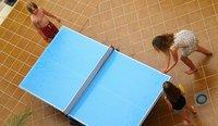 Memorias veraniegas de una mesa de ping pong