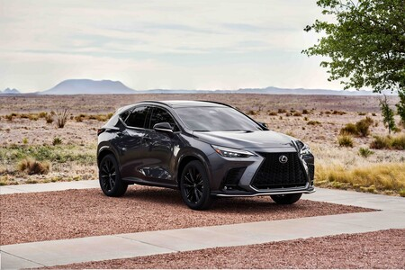 Lexus Nx 2022 14