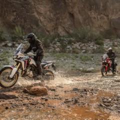 Foto 51 de 57 de la galería honda-crf1000l-africa-twin-1 en Motorpasion Moto