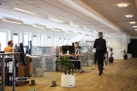 ¿Despachos u oficinas abiertas? La eterna lucha por la productividad