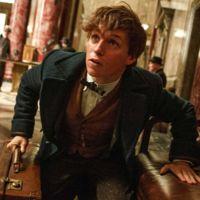 'Animales fantásticos y dónde encontrarlos', teaser tráiler y cartel de la precuela de Harry Potter