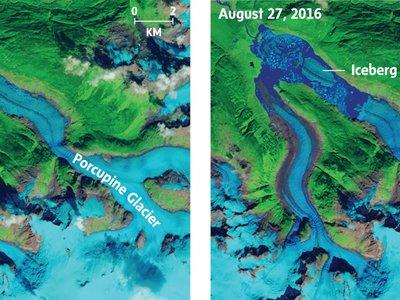 Un pedazo gigantesco del glaciar Porcupine flota a la deriva y es muy preocupante