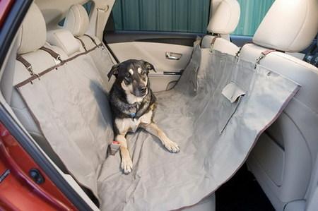 Toyota Venza, el amigo de los perros