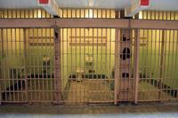 Pena de prisión para los empresarios que impongan malas condiciones laborales