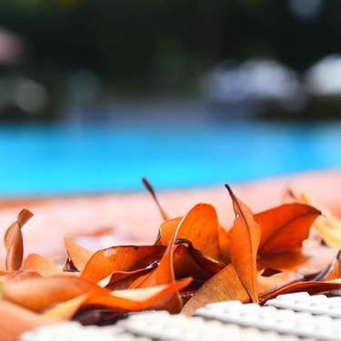 Robots limpiafondos: una guía para saber cuál necesita tu piscina