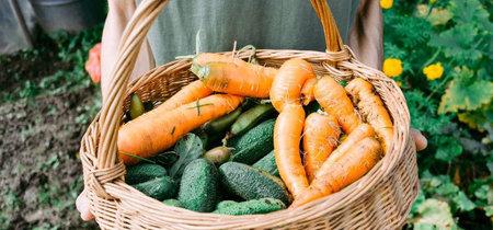 Todo lo que tienes que saber sobre la dieta ecológica antes de integrarla a tu alimentación