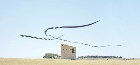 Ornitography Xavi Bou 6