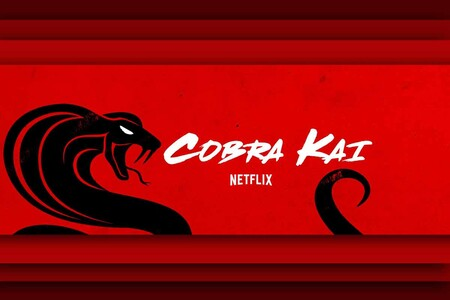 Cobra Kai Netflix