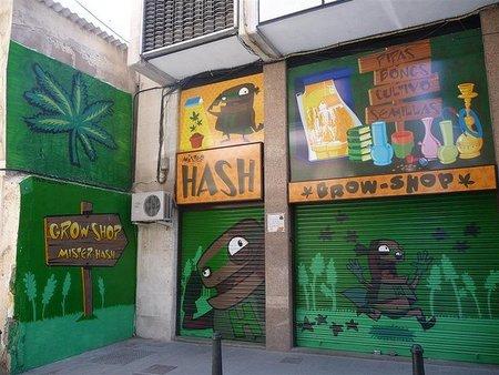 Holanda restringe el Cannabis ¿oportunidad?