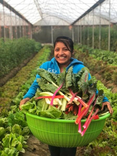 Rancho 314: un proyecto oaxaqueño que lleva productos orgánicos y felices a las mesas de grandes restaurantes