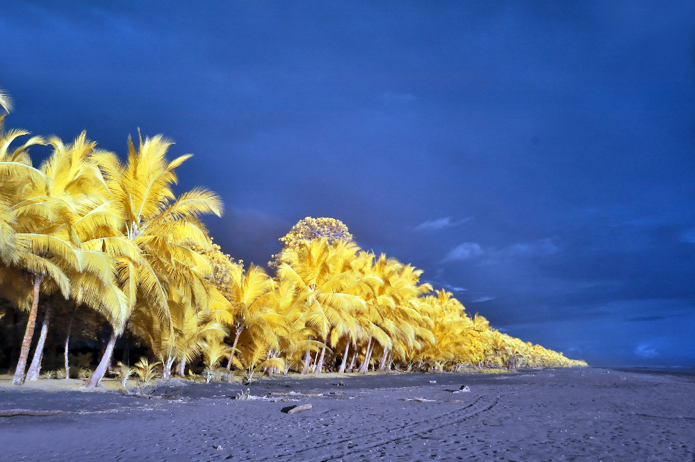Fotografia Infrarroja Playa De Costa Rica
