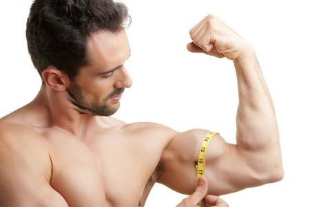 Musculoscrecen3