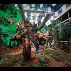 Foto 10 de 26 de la galería fotografias-del-rodaje-de-el-hobbit en Xataka Foto