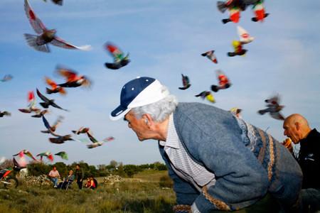 Ricardo Cases es el fotógrafo ganador en los Premios De Cultura de la Comunidad de Madrid 2017