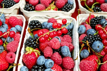 berries-murciélagos