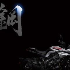 Foto 2 de 68 de la galería suzuki-gsx-s1000s-katana-2019-1 en Motorpasion Moto