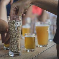 Las cervecerías Colima y Loba lanzan cervezas para rendir homenaje a migrantes mexicanos que cultivan lúpulo en Estados Unidos