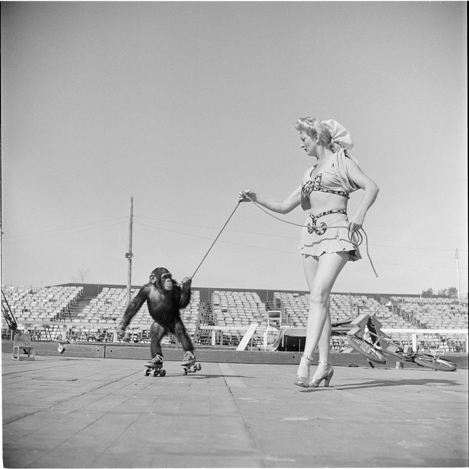 Foto de Stanley Kubrick, un mito del cine fotografiando el mundo del Circo (5/8)