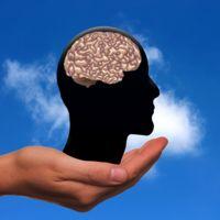 Antes de hablar de inteligencia artificial... ¿qué es la inteligencia?