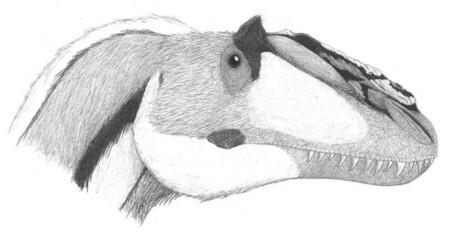 El animal con plumas más grande de la historia fue un antepasado del Tyrannosaurus rex