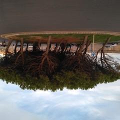 Foto 9 de 11 de la galería fotos-bq-aquaris-u-plus en Xataka
