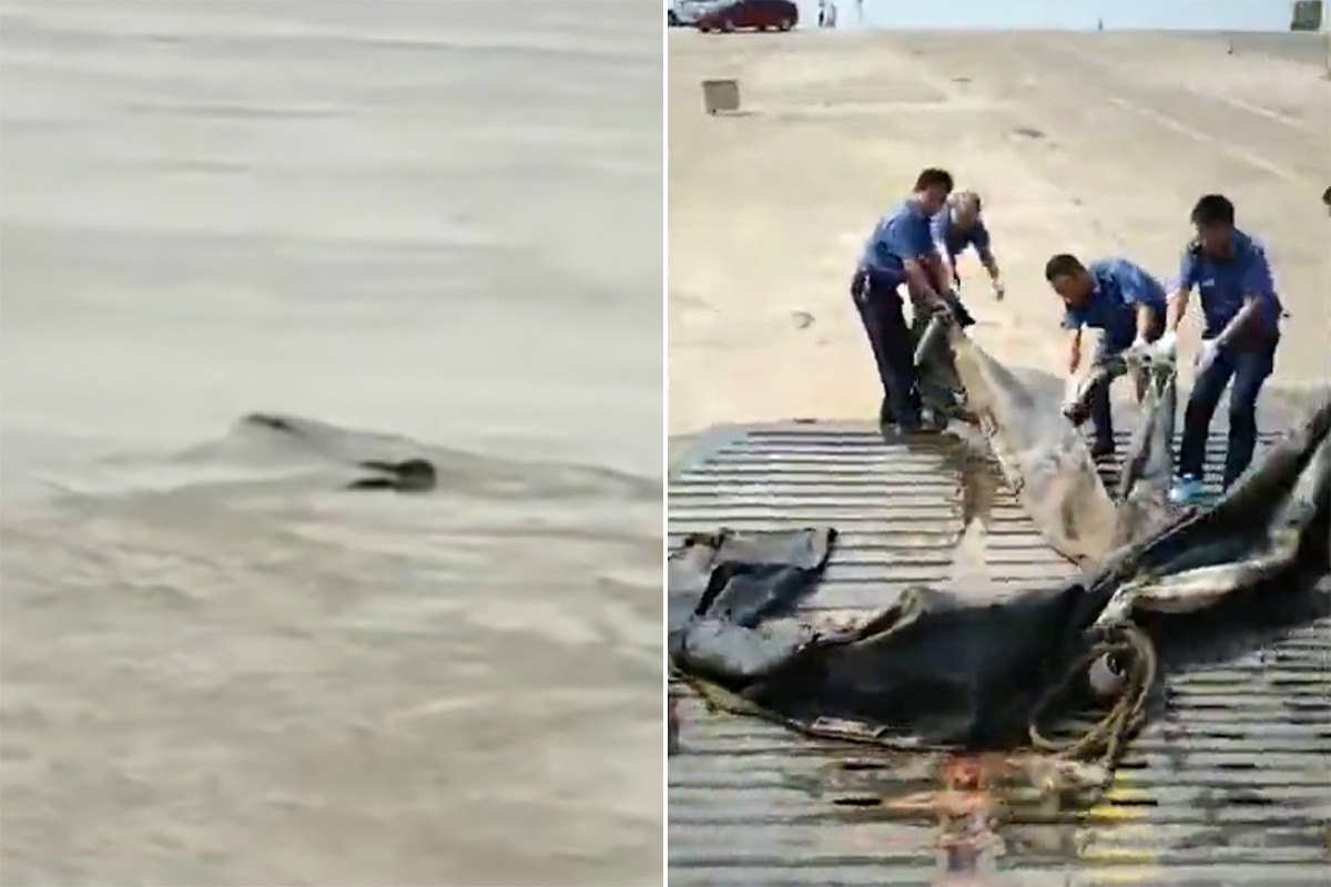 China creía haber encontrado a su propio monstruo del Lago Ness. Tan sólo era basura