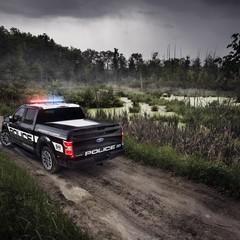 Foto 9 de 12 de la galería 2018-ford-f-150-police-responder en Motorpasión