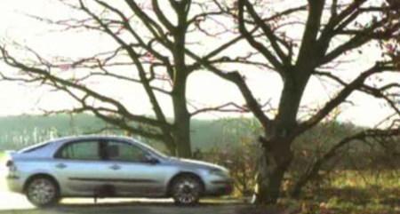 ¿Qué pasa si chocamos un coche con 5 estrellas EuroNCAP contra un árbol?