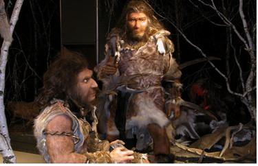 El hombre de Neandertal, exposición en Madrid