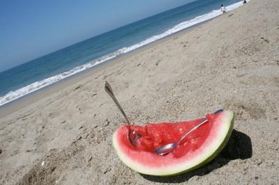 Hábitos alimenticios: ¿Qué nos llevamos a la playa? La cesta de picnic a examen
