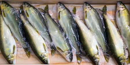 Fish 1457197 1280