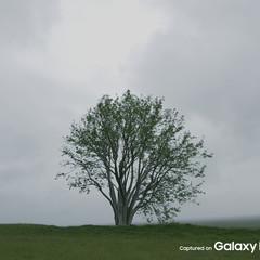 Foto 12 de 37 de la galería galaxy-note-8 en Xataka