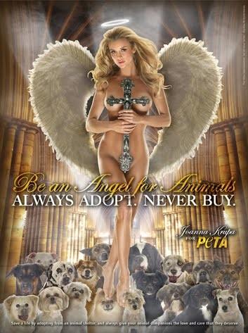 Joanna Krupa y su polémico desnudo en pro de la adopción animal